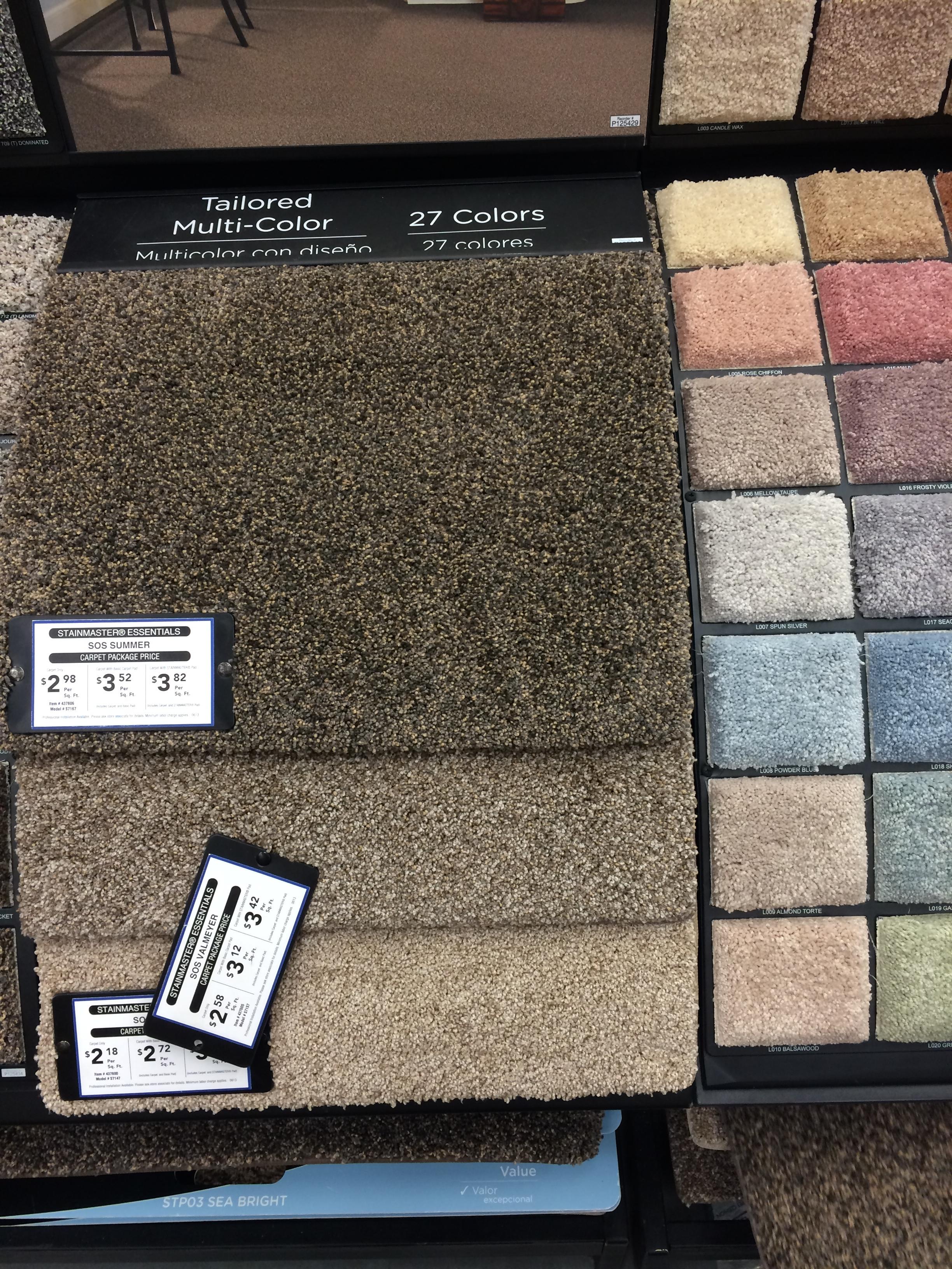 Stainmaster carpet phenix grove landing 02 sport cargo for Stainmaster carpet