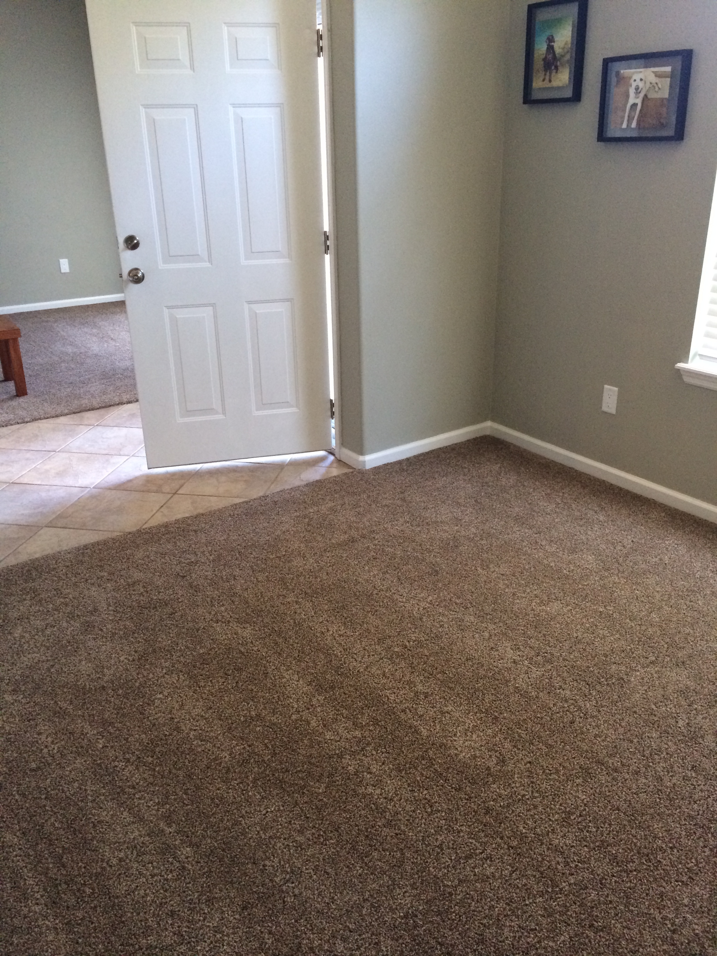 Installing carpet the mace place for How to buy carpeting