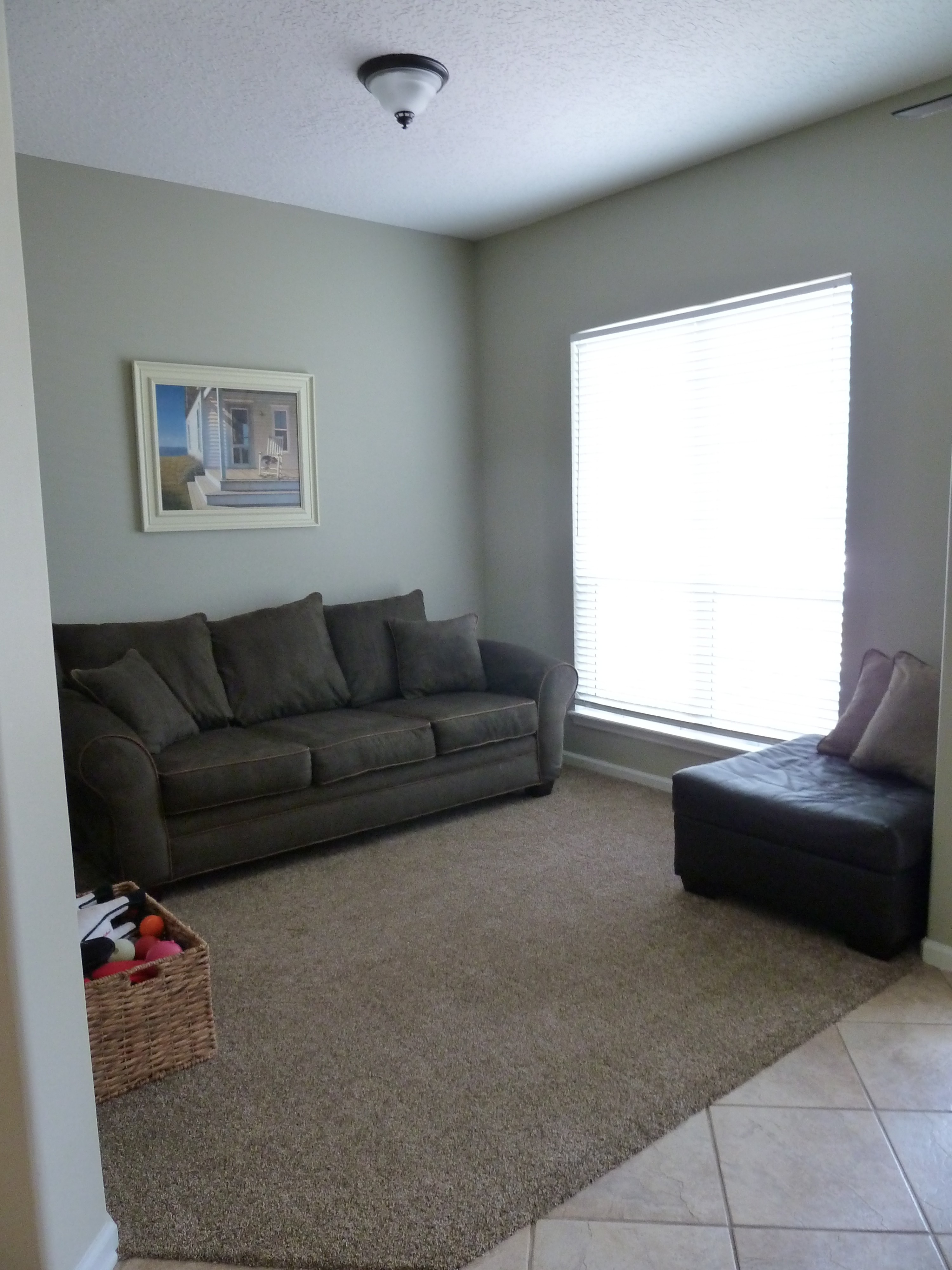 What Color Sofa Goes With Brown Carpet
