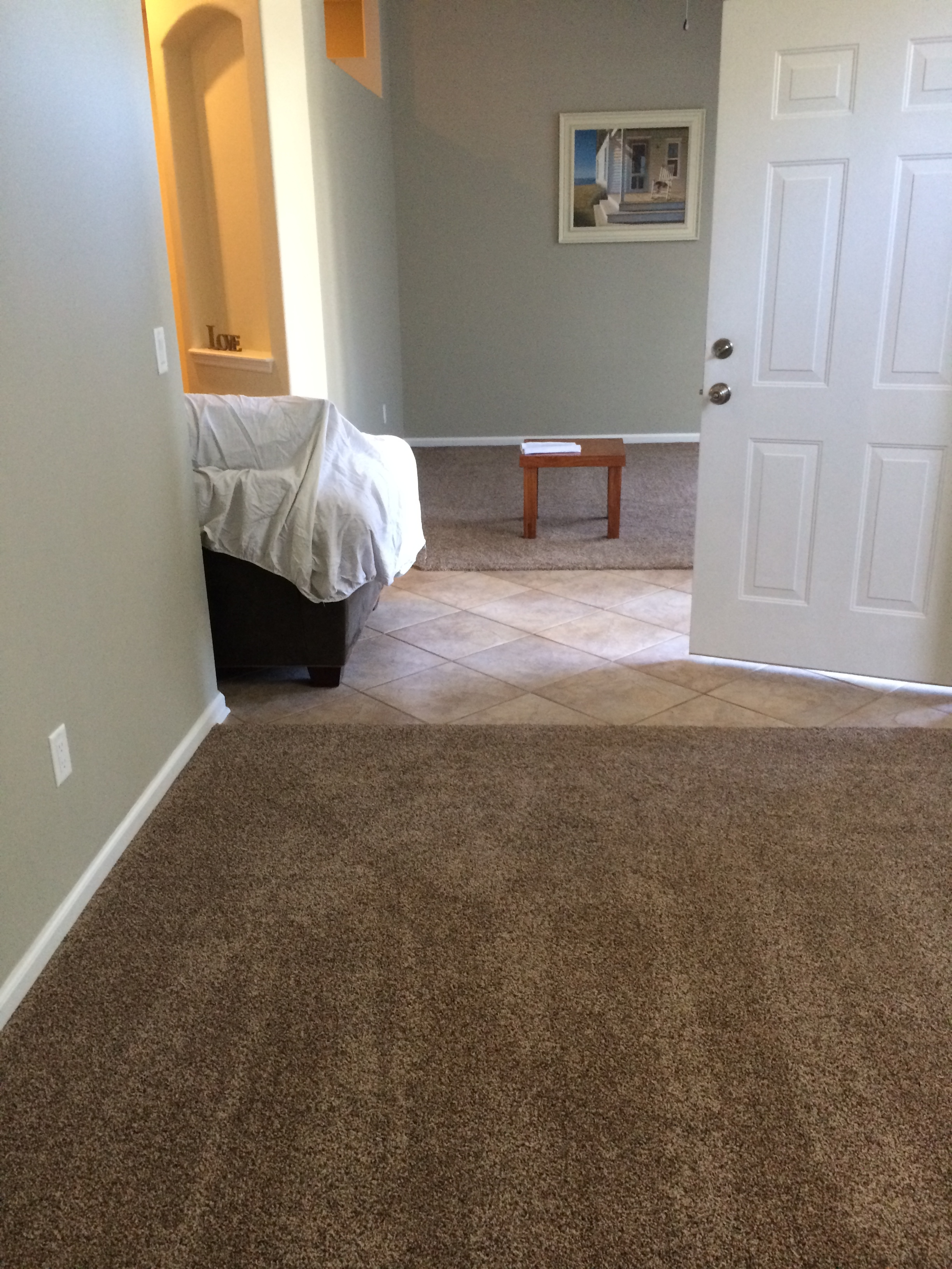 How Happy I Am That We Did Not Go With The Darker Color This Carpet